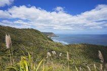 Nuova Zelanda, Piha Beach con Lion Rock, Nun Rock e West Coast — Foto stock
