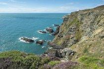 Regno Unito, Galles, Anglesey, Isola Santa, costa scogliera di South stack vista aerea — Foto stock