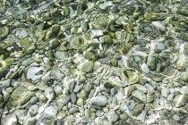 Croácia, Mar Mediterrâneo, oceano, seixos no chão — Fotografia de Stock