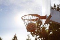 Ball in basketball hoop against sun — Stock Photo