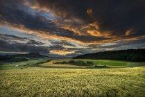 Німеччина, Баден-Вюртемберг, Констанція, перегляд пшенична сфера на захід сонця — стокове фото