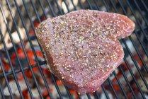 Primo piano di bistecca di tonno in spezie ed erbe grigliate sul barbecue — Foto stock