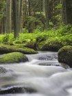 Rocks in creek at Lerau Valley, Bavaria, Germany — Stock Photo