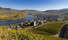 Germany, Rhineland Palatinate, View of town Bremm near Moselle River — Stock Photo