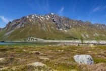 Норвегия, Лофотен, горы и мост через реку — стоковое фото