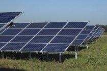 Solar panels on grass against sky — Stock Photo