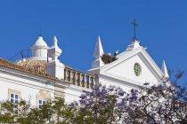 Portugal, Faro, perchando en aves cigüeñas anidan en iglesia de la Misericordia - foto de stock