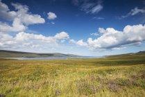 Об'єднана Kingom, Шотландія, перегляд Лох надії поблизу Inverhope денний час — стокове фото