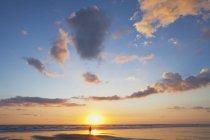 Nova Zelândia, homem carregando mochila caminhando ao longo da praia ao pôr do sol — Fotografia de Stock