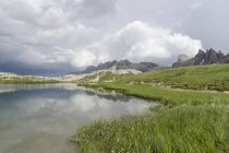Italy, Dolomites, Tre Cime di Lavaredo, view of lake with grass and plants on shore — Stock Photo
