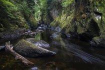Grande Britian, Galles, Betws-y-Coed, canyon Fairy Glen a Snowdonia National Park — Foto stock