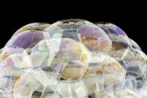 Abstract pattern of soap bubbles surface, close up — Stock Photo