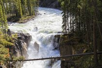 Канада, Альберта, Национальный парк Джаспер, водопад Сунвапта, река Сунвапта — стоковое фото