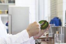 Analyste alimentaire féminine travaillant en laboratoire, vue partielle — Photo de stock