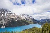 Канада, Альберта, Национальный парк Банфф, озеро Пейто, вид с Боу Саммит — стоковое фото