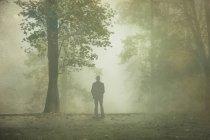 Rückansicht des Mann in nebligen Wald — Stockfoto
