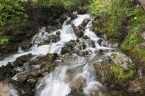 Соединенные Штаты Америки, Alaska, Turnagain Arm at Cook Inlet, Falls Creek, waterfalls — стоковое фото