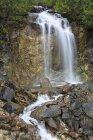 USA, Alaska, Veduta delle cascate del forcone a Klondike Highway, scena della foresta — Foto stock
