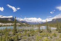 Canada, Alberta, Jasper National Park, Banff National Park, Icefields Parkway, Saskatchewan River — Stock Photo