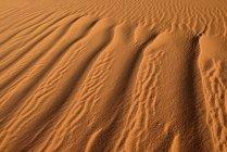 North Africa, Algeria, Sahara, sand ripples, texture on a sand dune — Stock Photo