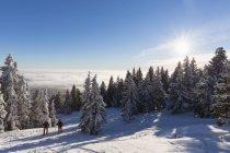 Allemagne, Bavière, homme mûr et femme de randonnée sur Grosser Arber — Photo de stock