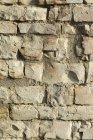 Ansicht der alten Steinmauer tagsüber — Stockfoto
