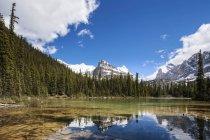 Канада, Британская Колумбия, Национальный парк Yoho, озеро о ' Хара и Yukness гора в дневное время — стоковое фото