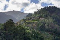 Portogallo, Madera, montagna vicino Santana — Foto stock