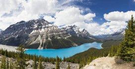 Канада, Альберта, Скалистые горы, Национальный парк Джаспер, Национальный парк Банф, озеро Пейто — стоковое фото