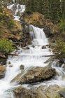 Канада, Альберти, Національний парк Джаспер, клубок Creek Falls — стокове фото