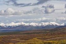 Paesaggio lungo la Denali Highway in autunno con Alaska Range, Alaska, Stati Uniti — Foto stock