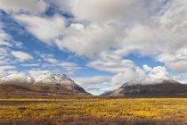 Paysage le long de la Denali Highway en automne avec Alaska Range, Alaska, États-Unis — Photo de stock