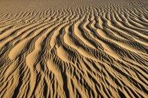 Argelia, Vista de las dunas cerca de Tehenadou - foto de stock