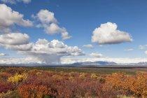 Paesaggio lungo Denali Highway in autunno con Alaska Range, Alaska, USA — Foto stock