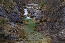 Austria, Baja Austria, Reserva natural Oetscher-Tormaeuer, arroyo de montaña con rocas - foto de stock