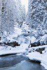 Blick auf Riesloch Wasserfälle im Bayerischen Wald, Bayern, Deutschland — Stockfoto