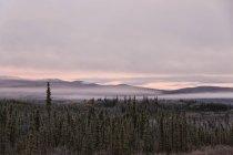 Kanada, Blick auf Landschaft entlang der Top of the World Highway im Herbst — Stockfoto