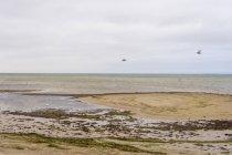Vista panorâmica do mar de Báltico de dia no inverno, Ruegen, Mecklenburg-Western Pomerania, Alemanha — Fotografia de Stock