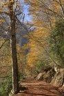 Spain, National Park Ordesa y Monte Perdido, Hiking path in the Llanos de La Larri — Stock Photo