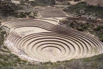 Peru, Moray, Incan agricultural terraces — Stock Photo