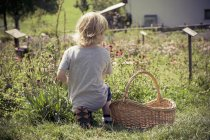 Little boy kneeling in herb garden — Stock Photo