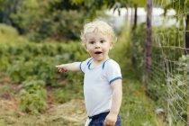 Niño apuntando a algo en el huerto - foto de stock