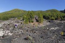 Spain, Canary Islands, La Palma, Coladas de San Juan, Cumbre Vieja, Lava flow — Foto stock