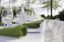 Close-up of Festive laid table with green napkins and wine glasses — Stock Photo