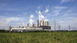 Germania, Nord Reno-Vestfalia del Nord, centrale elettrica Weisweiler e grenn erba sul primo piano — Foto stock