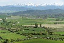 Spanien, Felder und Pyrenäen mit Hügeln im Hintergrund — Stockfoto