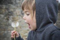 Ritratto di bambina che soffia il blowball — Foto stock