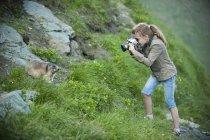Дівчина фотографує Бабак альпійський в природі — стокове фото