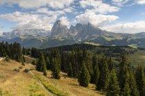 Grupo de Italia, Dolomitas, Tirol del sur, Langkofel, Seiser Alm durante el día - foto de stock
