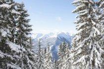 Autriche, Saalbach-Hinterglemm, Alpes en arrière-plan pendant la journée — Photo de stock